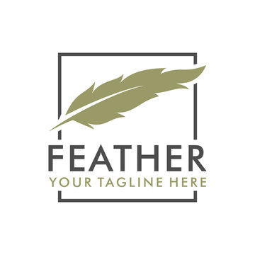 Feather elegant logo design with rectangle object