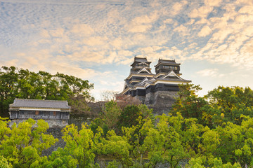 Fototapete - Kumamoto, Japan at Kumamoto Castle