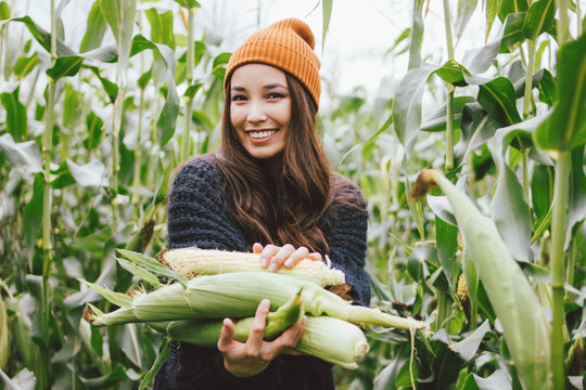 Beautiful carefree long hair asian girl in the yellow hat and knitted sweater holding cobs of corn in autumn field. Sensitivity to nature concept