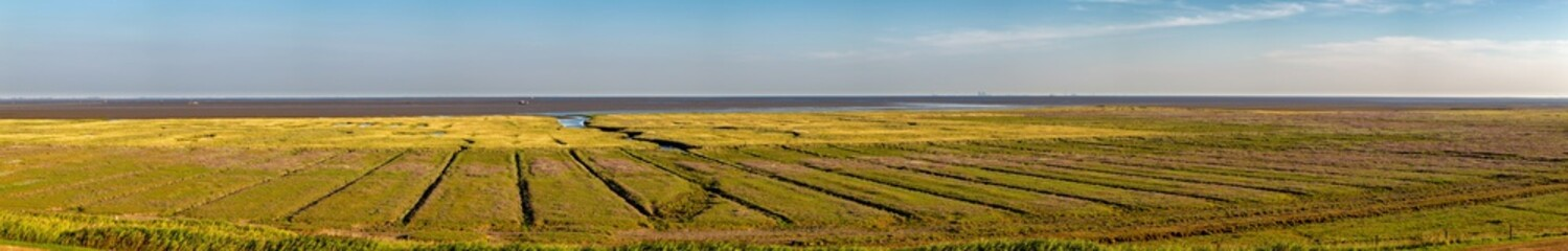 Fototapete - Panorama of the salt marshes on the East Frisian Island Juist in the North Sea, Germany.