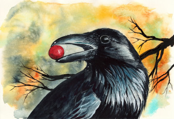 Watercolor picture of a black raven with red berry in its beak with tree branches on the background