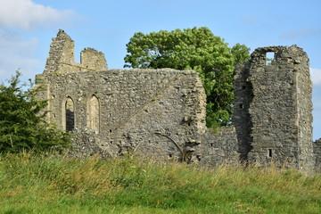Klasztor Inch Abbey
