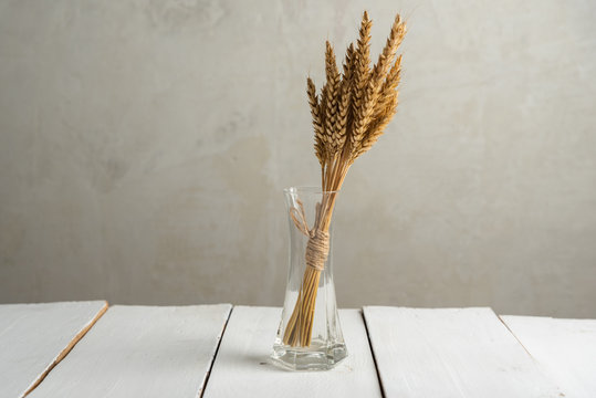 ears of wheat in a small glass vase on a gray background