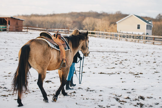 Horse Rider Winter