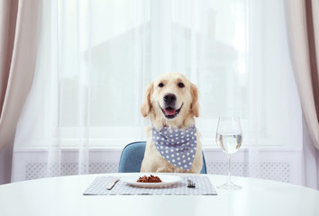Cute funny dog sitting at served dining table indoors Wall mural