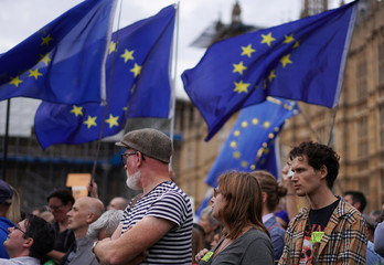 Anti-Brexit protestors are seen with flags of the European Union in the background, outside the Houses of Parliament in London
