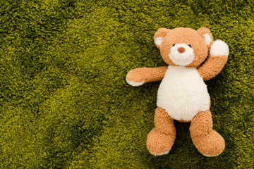 Top view of plush brown bear on green soft carpet