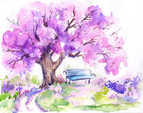 Blooming pink trees,blue bench in the park.Watercolor sketch.Hand drawn