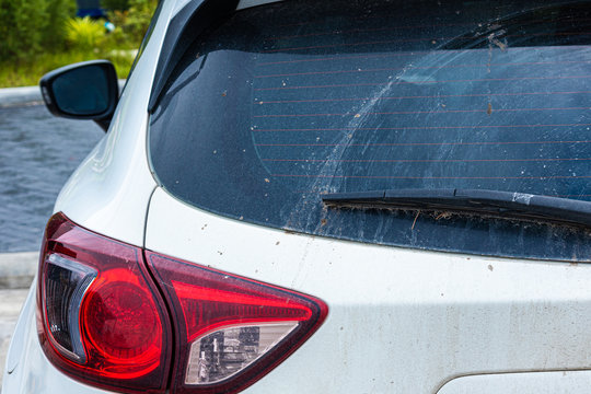 car : dirty car,Dirty back glass of the car with a wiper blade,Rear Car glass covered in dust after driving on a dirt road