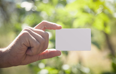 Male hand holding empty business card in nature.