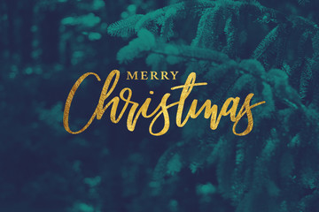 Wall Mural - Gold Merry Christmas Script with Duotone Evergreen Branches Background