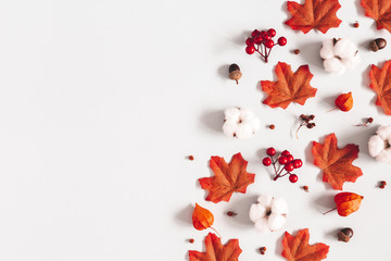 Autumn composition. Pattern made of flowers, maple leaves on gray background. Autumn, fall, thanksgiving day concept. Flat lay, top view, copy space