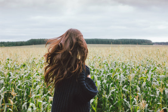 Beautiful carefree long hair asian girl in knitted sweater from behind in the autumn corn field. Sensitivity to nature concept