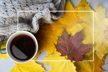 Autumn leaves, cup of coffee, warm scarf on the table. Seasonal, book reading, Sunday relaxing and still life concept. Selective focus.