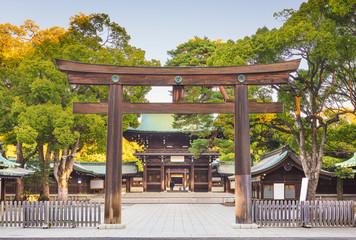 Fototapete - Meiji Shrine in Tokyo, Japan.