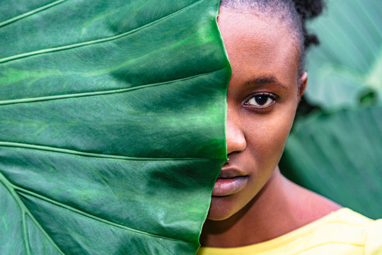 Close up face of african girl hid behind palm leaf