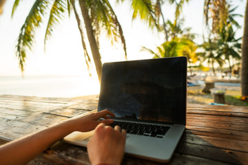 freelancer girl with a computer among tropical palm trees work on the island in sunset