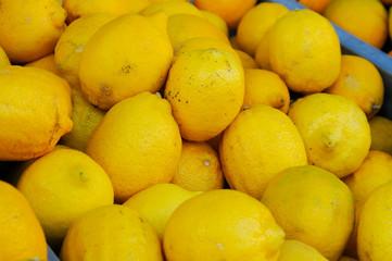 Fototapeta fresh lemons in the market