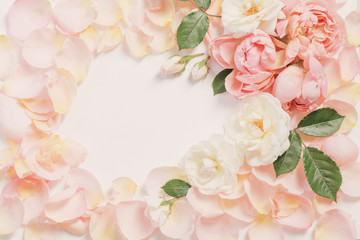 rose flowers and petals on white  background Wall mural