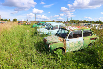 Vintage car cemetery in a field under blue sky with clouds