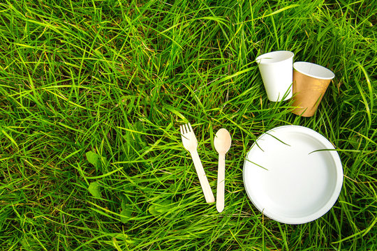 Tableware eco-friendly material green grass
