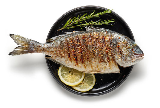 Grilled fish on black plate