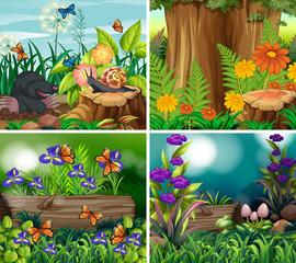 Foto auf Acrylglas Grun Set of background scene with nature theme