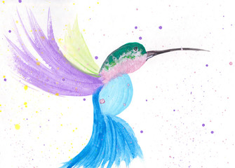 A Hand Painted Watercolor Illustration Of A Colorful Hummingbird