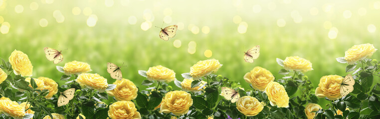 Tuinposter Bloemen Summer bright background with many yellow fluttering butterflies and blooming fantasy yellow roses flowers blossom and glowing sparkle bokeh