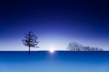 北海道、美瑛の雪景色