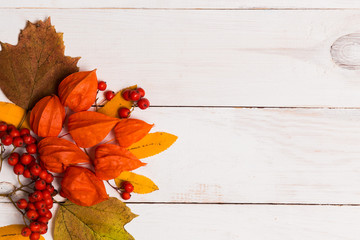 Bright red orange autumn leaves, berries on white wooden background, top view