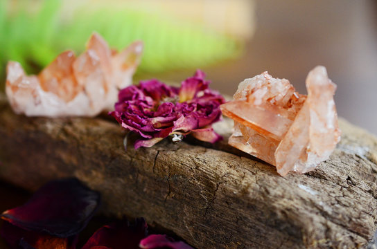 Tangerine Quartz cluster on wooden slab. Roses and healing crystals on display, bohemian decorations. Metaphysical witchy healing display. Crystal collection with flowers.