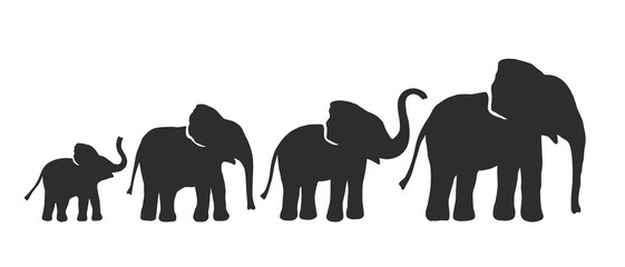 Set of Different Elephant Silhouettes. Vector