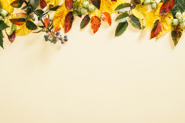 Autumn composition. Frame made of fall autumn leaves on pastel beige background. Flat lay, top view Fototapete