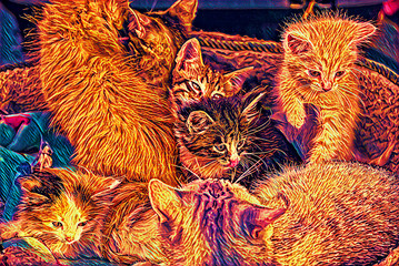 Computer painting of funny fluffy pussycats on street in Moscow