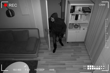 Robber Entering In House - fototapety na wymiar