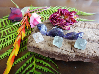 Variety of healing crystals on a table, collection of minerals on display. Natural lighting, macro photography. Collection of colorful crystals, Crystal Tree statue.  Table with crystals and plants.