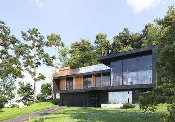 Fototapeta Modern house in forest, 3d render obraz