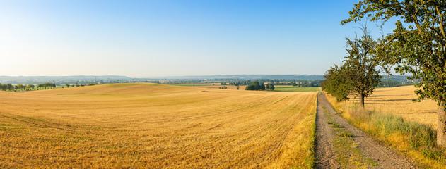 Landschaftspanorama Elbtal bei Meißen im Sommer