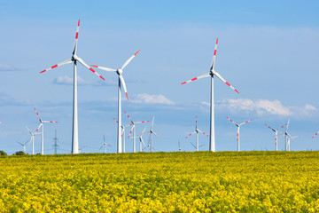 Wind turbines behind a flowering canola field seen in Germany
