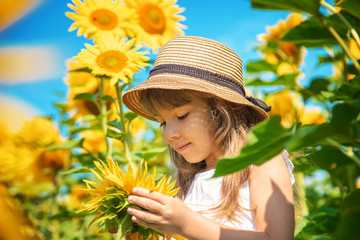 A child in a field of sunflowers. Selective focus. Fototapete