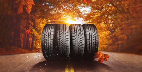 Foto auf Leinwand Herbst autumn - time to change tires on winter tires
