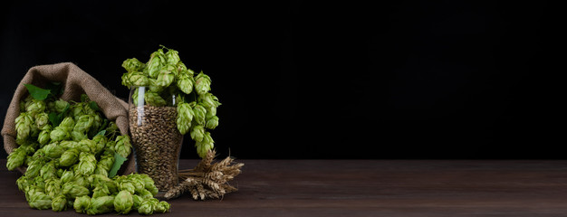 Beer glass with malt and fresh green of hops on dark wooden table. Empty space for text. Black...