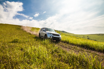 Japanese SUV goes down the hill Wall mural