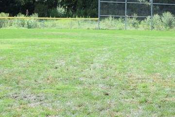 Keuken foto achterwand Lime groen Softball Field