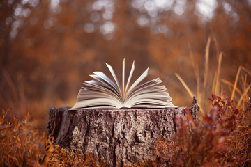 An open book lies on a stump in the autumn forest. Autumn leafing through pages