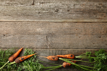Fresh carrots with greens on old wooden planks Wall mural