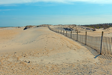 Beach Dunes Encroaching on the Sand Fence