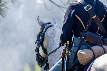 Horse and rider during an American Civil War Re-enactment