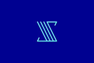 Creative Innovative Initial Letter logo SS S. Minimal luxury Monogram. Professional initial design. Premium Business typeface. Alphabet symbol and sign.